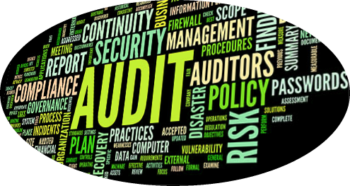 audit_wordcloud