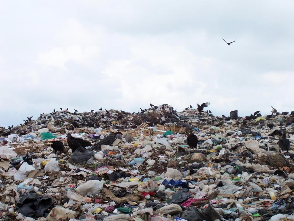 Garbage-Dump