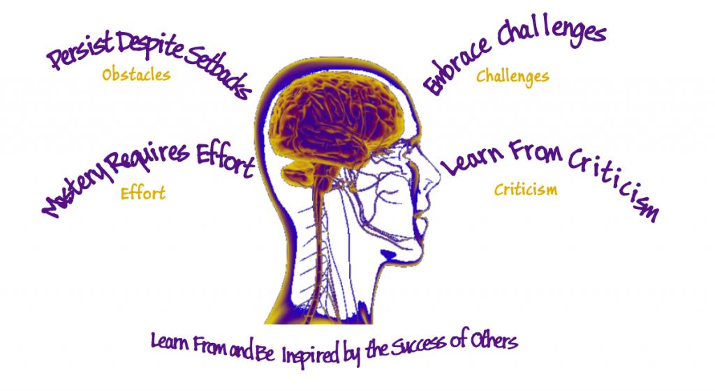 personal_growth_brain